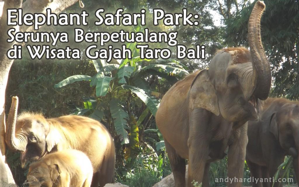 elephantsafaripark